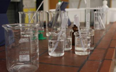Der Wissenschaftstag am Otto-von-Taube-Gymnasium